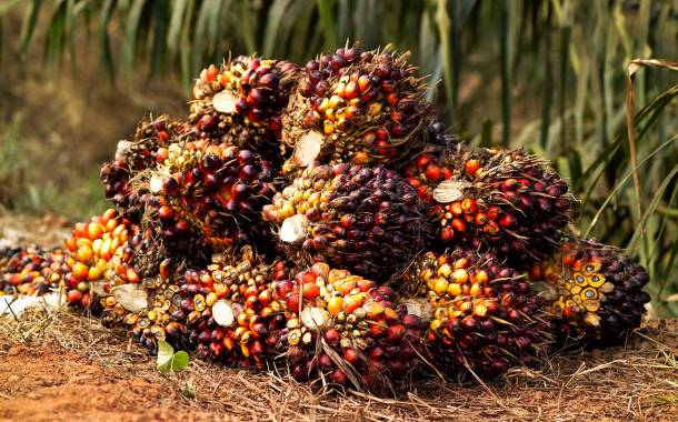 Nestlé to track palm oil and milk with blockchain technology pilot