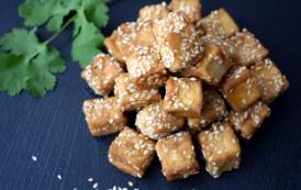 Tofu producer House Foods America to invest $146.3m in new facility