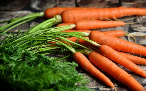 As much as 16% of produce from UK farms is wasted – research