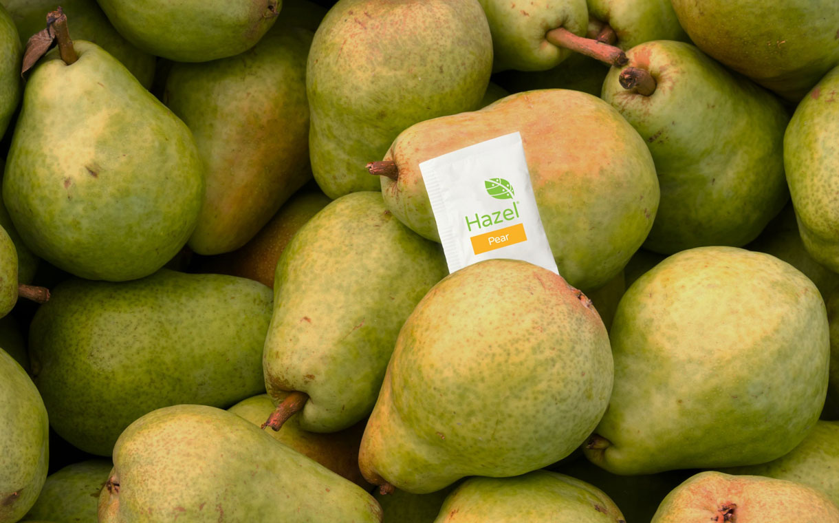 Food waste start-up Hazel receives over $3m in funding