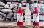 Luscombe Drinks releases sparkling organic fruit waters