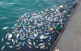 Major companies partner with WWF to tackle plastic waste