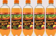 Levi Roots launches Exotic Kick beverage with chilli flavour