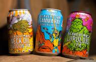 Heineken acquires £40m stake in British beer brand Beavertown