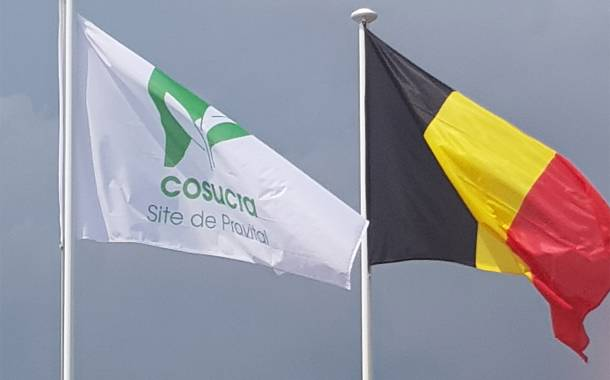 Cosucra sets up North American subsidiary as pea protein grows