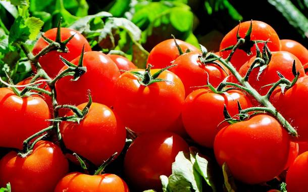 Lycored expands its tomato-based lycopene production