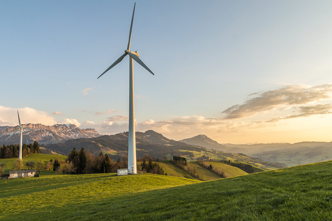 Nestlé opens wind farm to power half its UK and Ireland factories