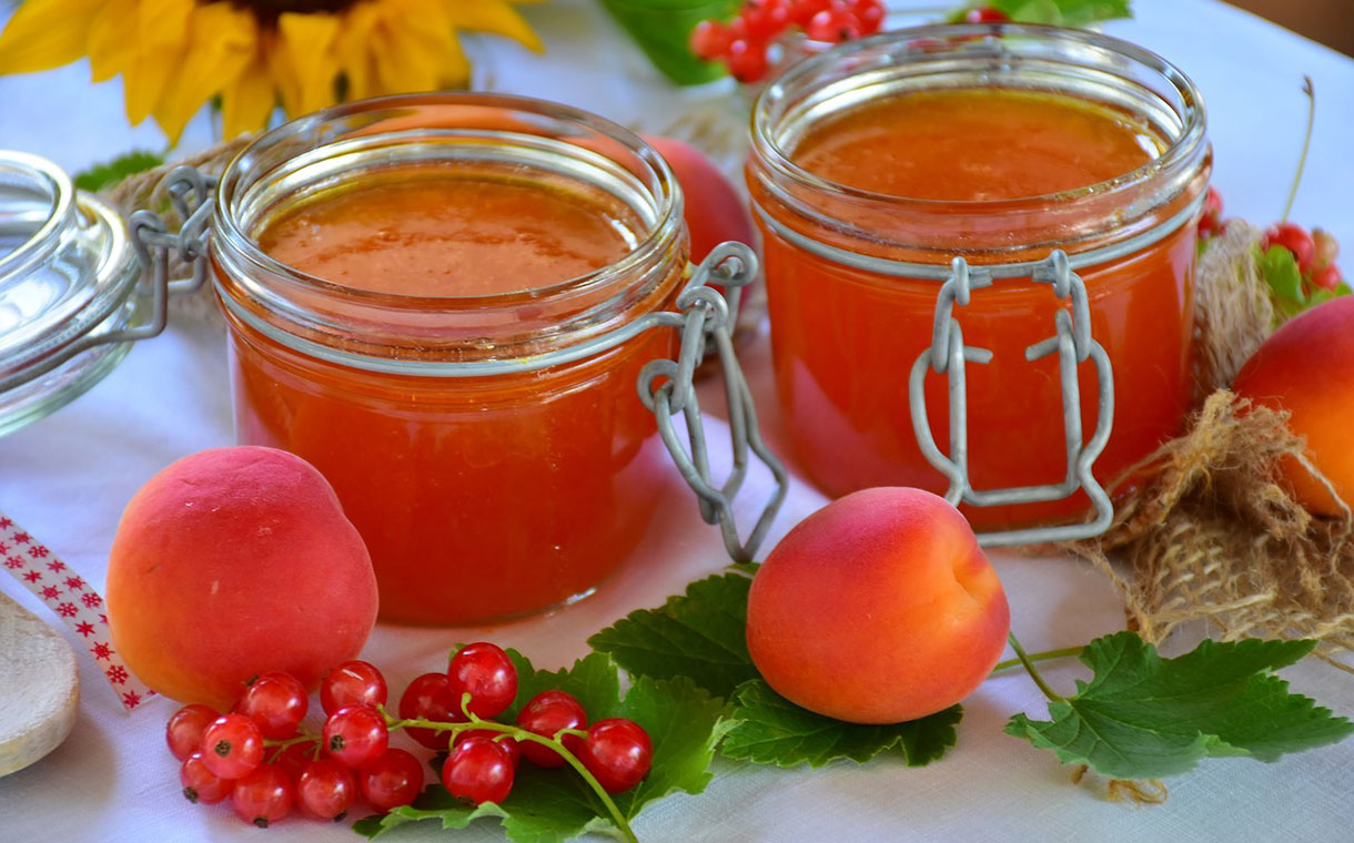 Brenntag to distribute Silvateam pectin in the US and Canada