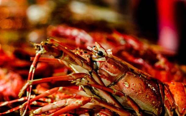 Premium Brands buys US-based lobster processor Ready Seafood