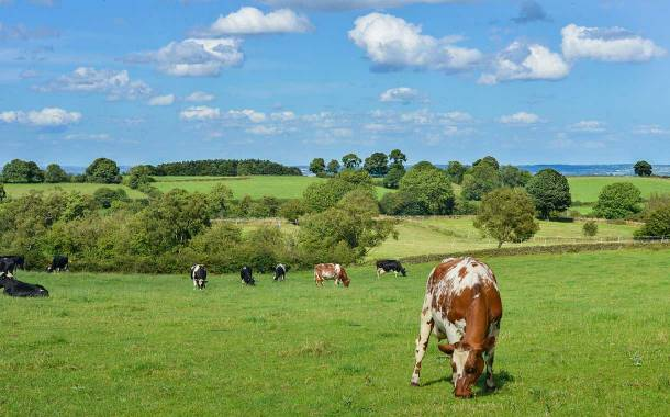 Arla farming standards model aims to bring sustainable change