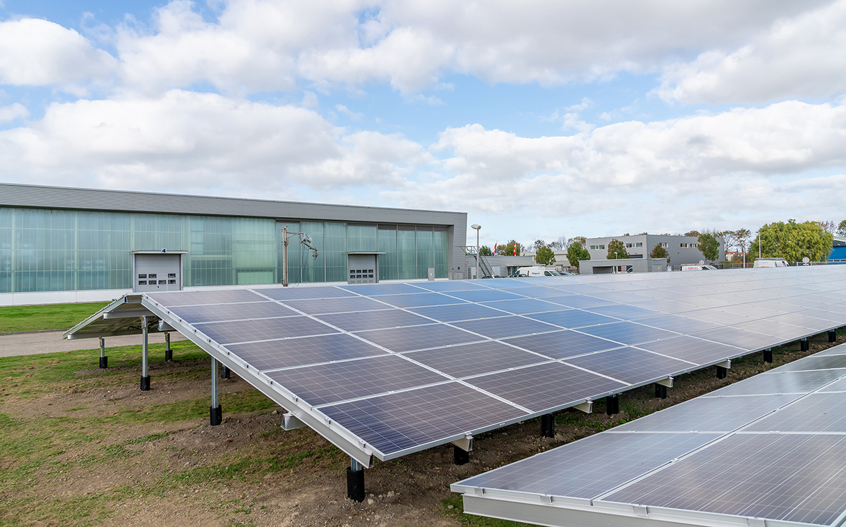Palsgaard site in the Netherlands becomes fully carbon neutral