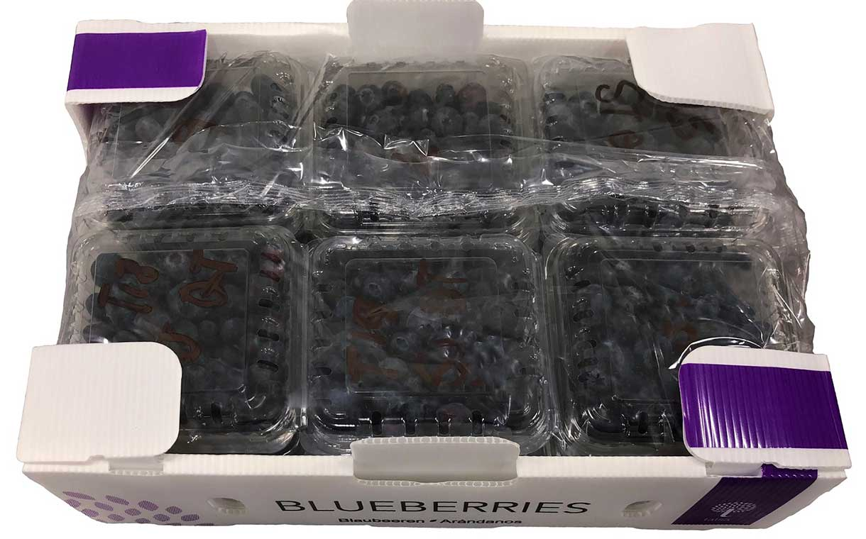 Stepac creates new cost-saving blueberry packaging solution