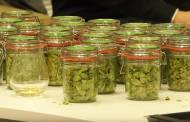 Interview: Barth Haas demonstrates versatility of hops
