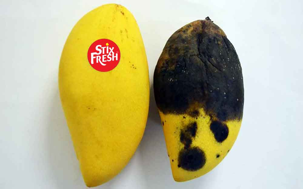 Stixfresh develops stickers to keep fruit fresh for two weeks