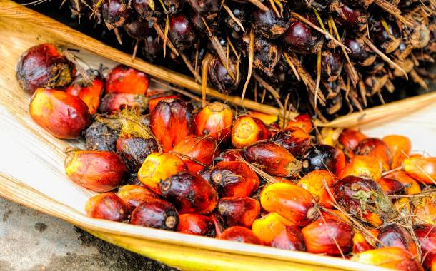'Sustainable palm oil is the best solution to deforestation'