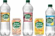 Nestlé expands Poland Spring flavoured sparkling water range