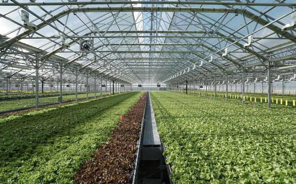 Urban farming: Gotham Greens sees 'continued rise' in demand