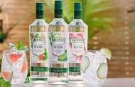 Diageo releases Smirnoff Zero Sugar Infusions range in the US