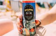 Kopparberg releases ready-to-drink pink gin with lemonade
