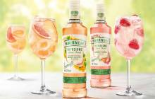 Diageo launches fruit-flavoured Smirnoff Infusions range in UK