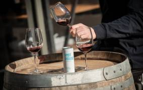 Carlton and United Breweries acquire Riot Wine