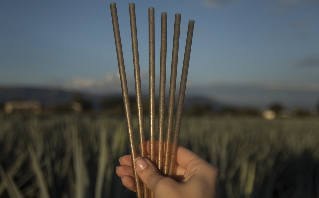 Jose Cuervo creates sustainable drinking straws from agave fibres
