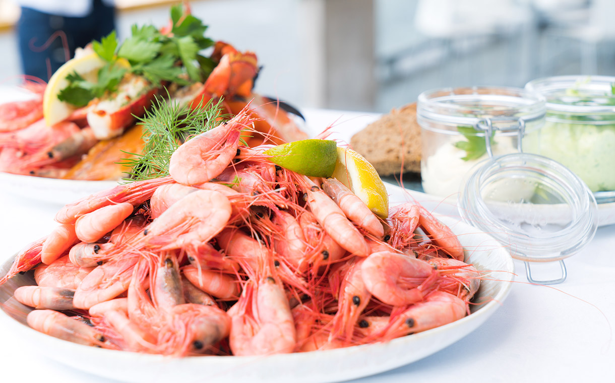 Two Canadian seafood companies form joint shrimp processing venture