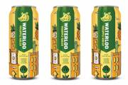 Waterloo Brewing to release pineapple radler this spring