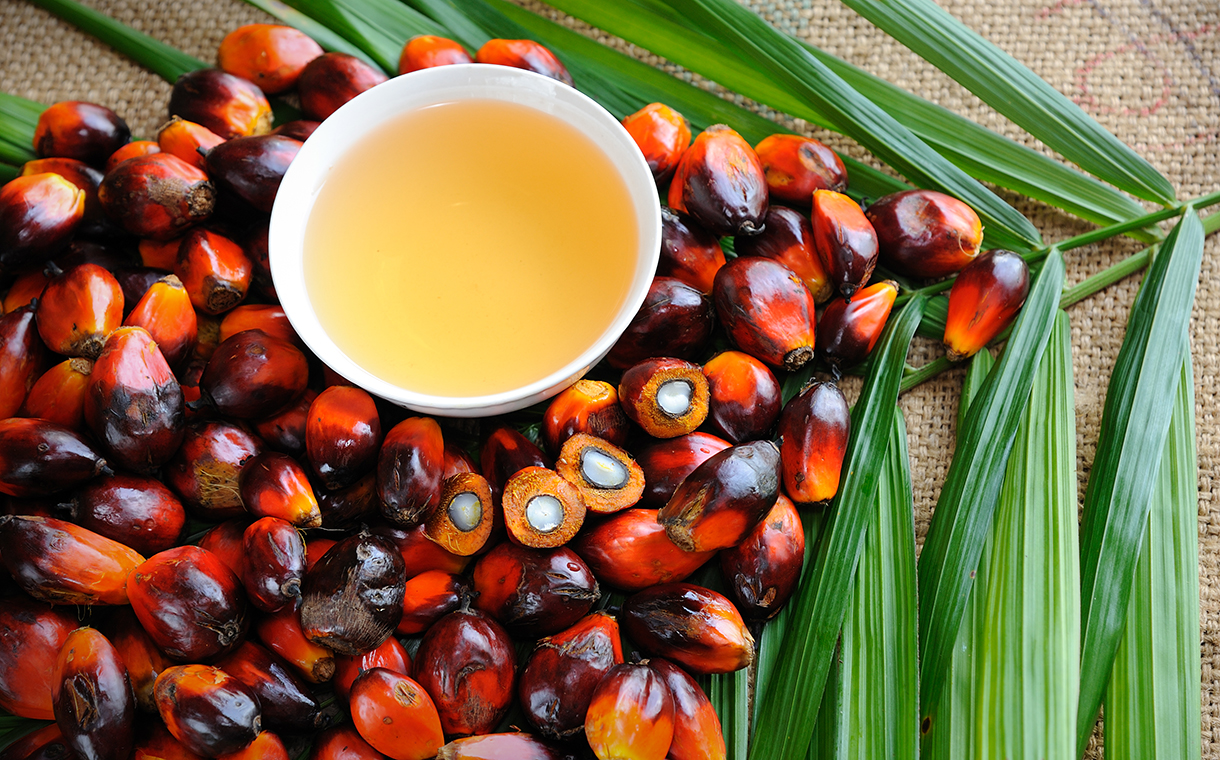 Malaysian palm oil industry adds blockchain technology