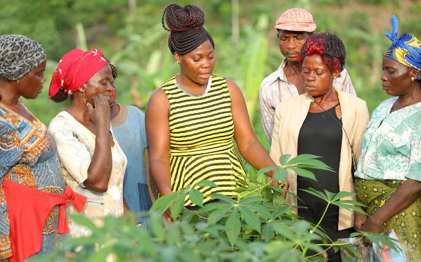 Nestlé partners with IDH to boost local sourcing in West and Central Africa