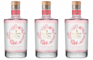 Pernod Ricard unveils Ceder's Pink Rose alternative gin