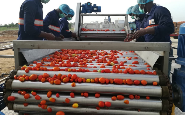 GBfoods opens $51m tomato processing facility in Nigeria