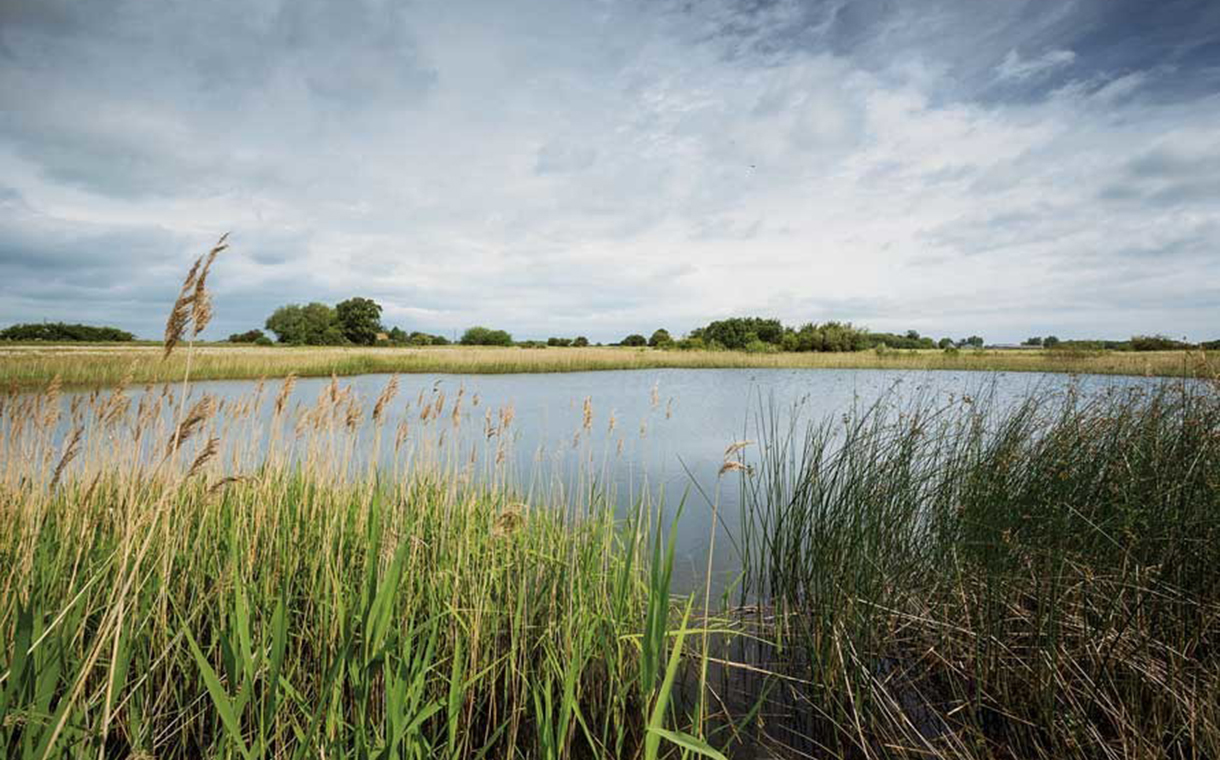 Cargill makes series of pledges to protect water resources
