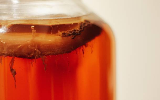 KBI launches kombucha industry's first code of practice