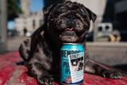 BrewDog supports homeless dogs with limited-edition IPA