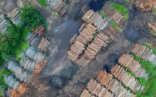 UK government sets out new law to curb deforestation in supply chains