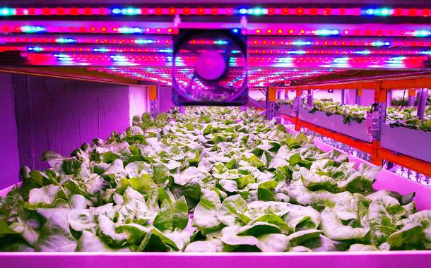 Vertical Farming World Congress makes virtue of virtual