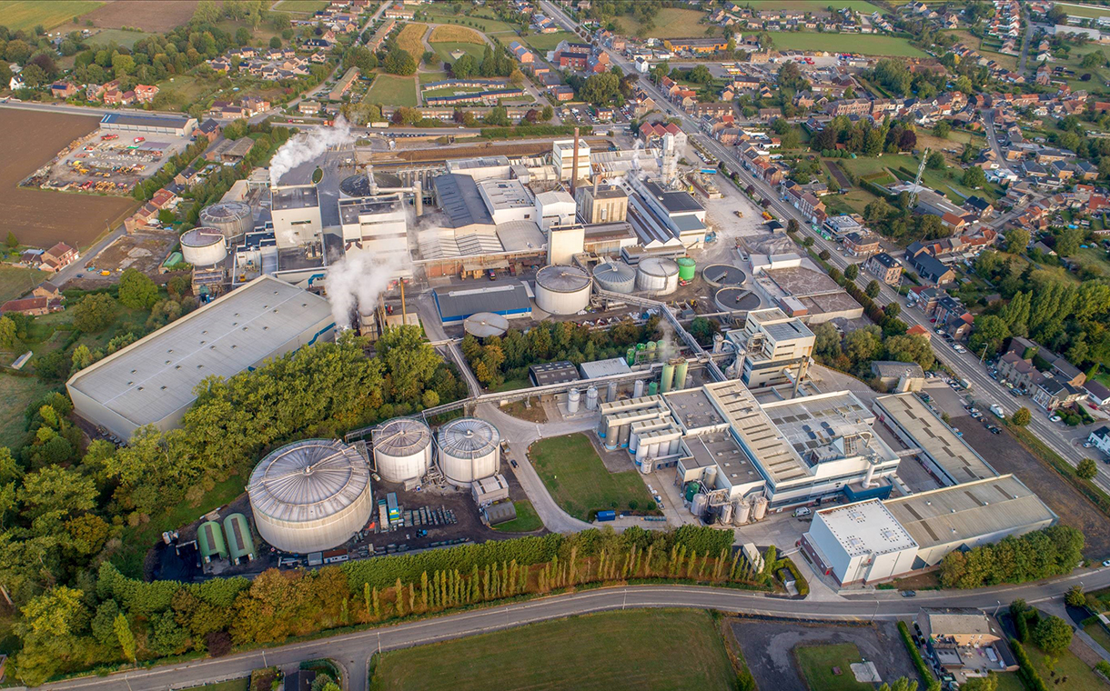 Beneo reduces carbon emissions by 40% at Belgian chicory plant