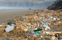 Iceland and UK's leading campaigners call for more transparency on plastic packaging