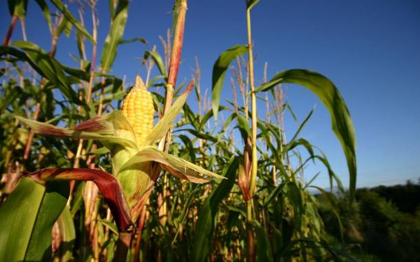 Cargill to advance regenerative agriculture practices across 10m acres of farmland
