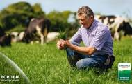 Grass-Fed Standard: The benchmark for Irish dairy