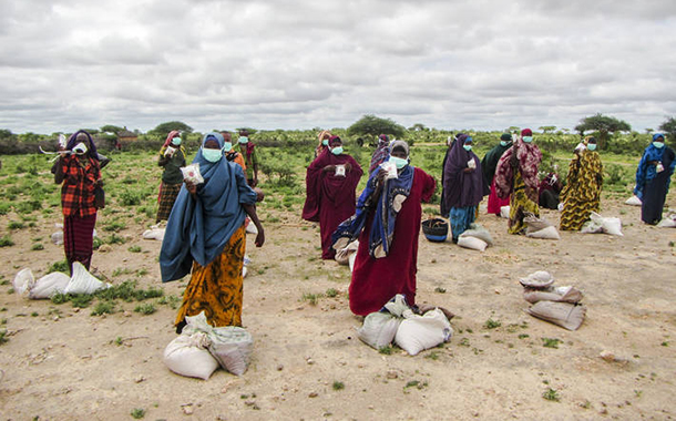 UN launches the Food Coalition to prevent Covid-19 'food crisis'