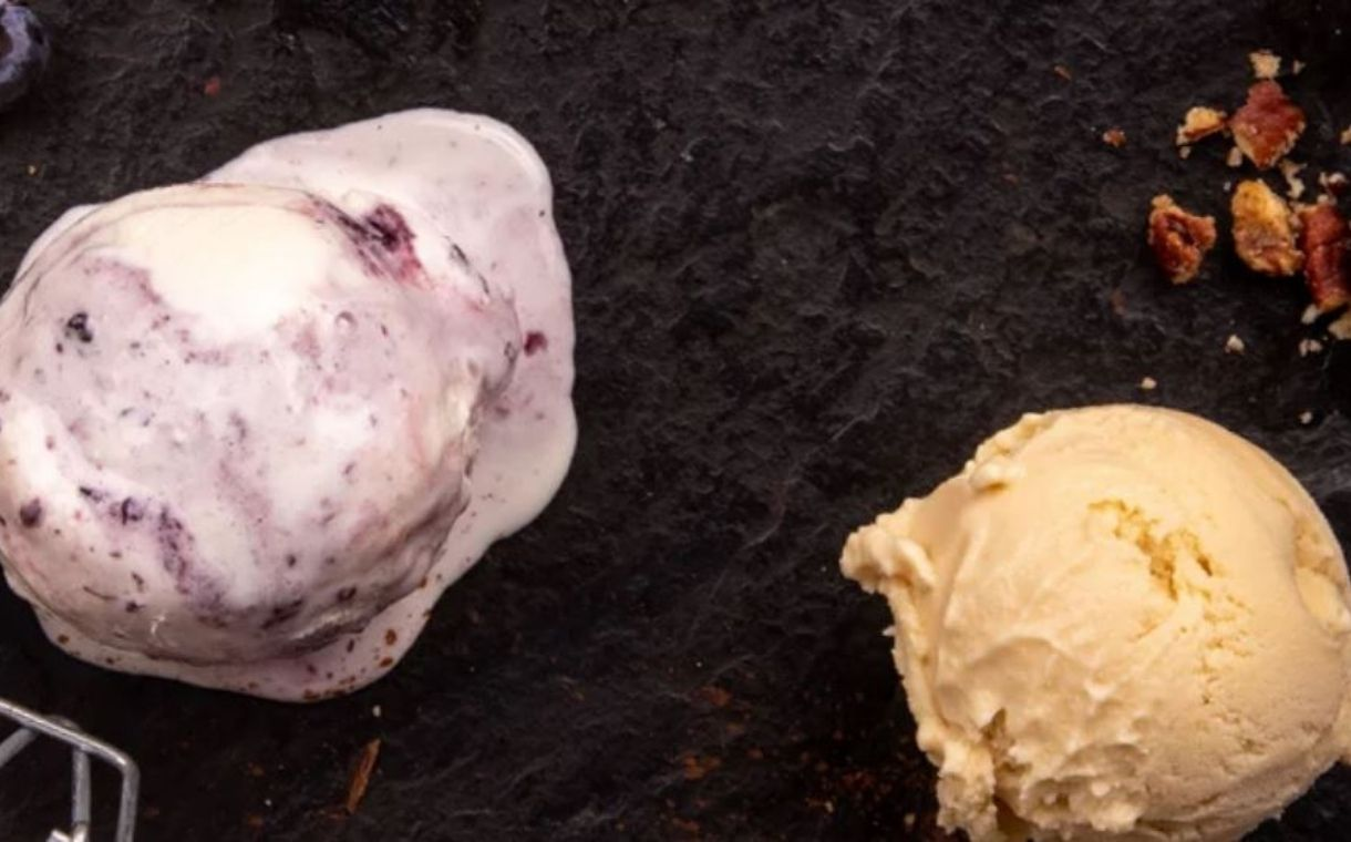 Ice cream maker High Road acquires Wisconsin plant