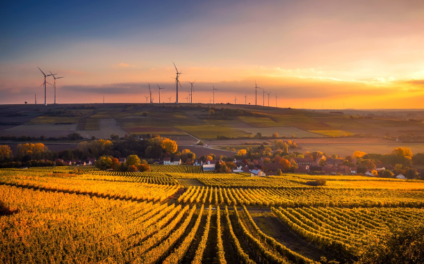 Top three sustainability food trends for 2021