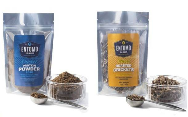Alternative protein firm Entomo Farms secures $2.9m in funding