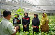 Barry Callebaut and Deloitte collaborate to support cocoa farmers in Indonesia