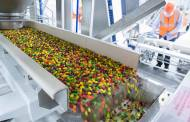 Mars Wrigley and Danimer Scientific to develop biodegradable sweet wrappers