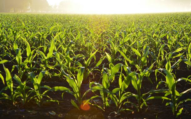 Canada invests $148m in sustainable agriculture practices