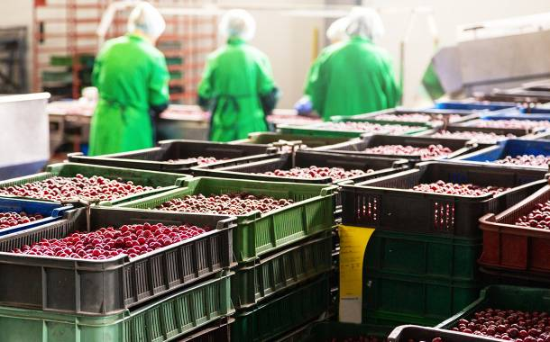 Food supply chain platform iFoodDS raises $15m in Series A funding