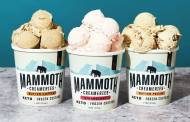 Mammoth Creameries unveils new frozen custard flavours
